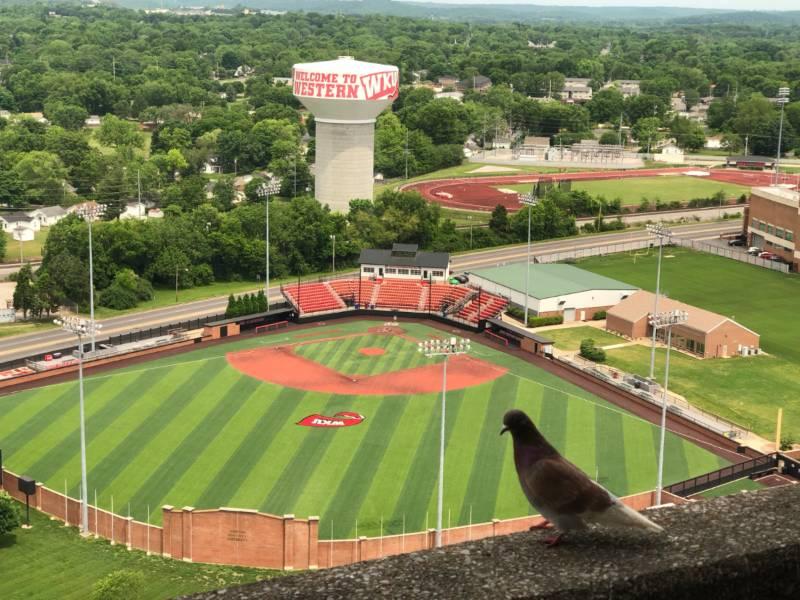University of Kentuckys Kroger Field hosts state title