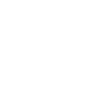 Pastime Tournaments Logo